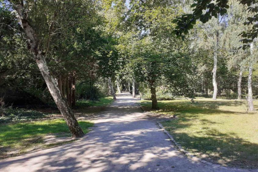 Foto: Weg durch einen Park