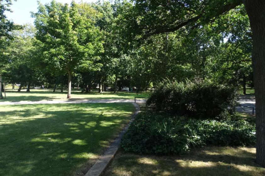 Foto: Park mit Grünfläche, Bäumen, Büschen und Fußweg
