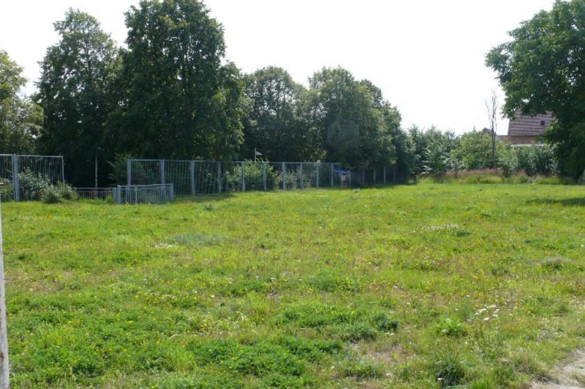 Foto: Grünfläche mit Bäumen im Hintergrund