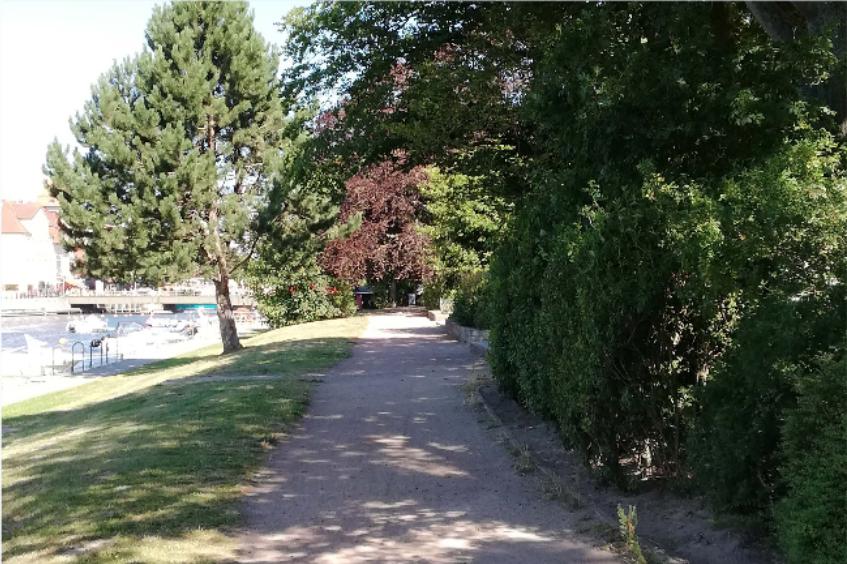 Foto: Fußweg entlang Wasser mit Grünfläche, Büschen und Baum